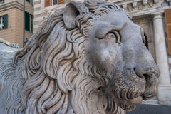 Lion close-up in front of St. Lorenzo Cathedral, Genoa. Statue of a lion close-up in front of St. Lorenzo Cathedral in Genoa, Italy Royalty Free Stock Photography