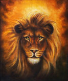 Lion close up portrait, lion head with golden mane, beautiful detailed oil painting on canvas, eye contact. Stock Photography