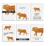 Lion coloré par zentangle tiré par la main d'ensemble pour des cartes Image libre de droits