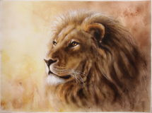Lion color painting. Lion head with a majesticaly peaceful expression Airbrush paintig on paper Royalty Free Stock Photo