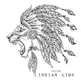 Lion in the colored Indian roach. Indian feather headdress of eagle Stock Images