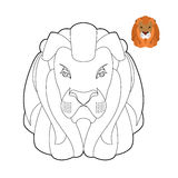 Lion coloring book. Head of predator with shaggy mane. Wild crue Stock Images