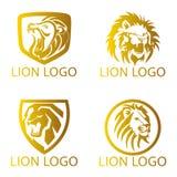 Lion Concept Logo Foto de archivo
