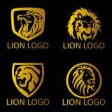 Lion Concept Logo Foto de archivo libre de regalías