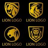 Lion Concept Logo Imagenes de archivo