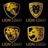 Lion Concept Logo Imagen de archivo libre de regalías