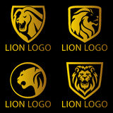 Lion Concept Logo Stock Images