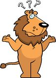 Lion Confused Royalty Free Stock Photography