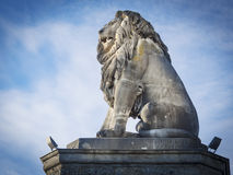 Lion of constance Royalty Free Stock Images