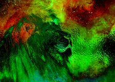 Lion in the cosmic space. Lion photos and graphic and glass effect. Royalty Free Stock Photography