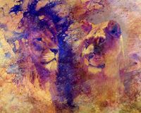 Lion couple - lion and lioness, on abstract structured background. Stock Photos