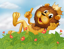A lion with a crown at the garden Stock Photography
