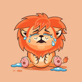Lion cub is crying Royalty Free Stock Photo
