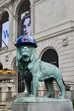 Lion Cub Fan royalty-vrije stock foto's