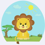 Lion cub on the nature in the afternoon. Royalty Free Stock Image