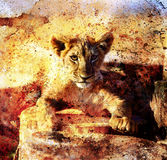 Lion cub photos and painting Abstract Collage. Eye Royalty Free Stock Photo