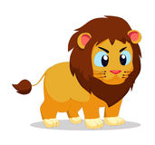 Lion so cute Royalty Free Stock Images