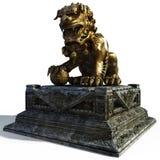 lion d'échine Image stock