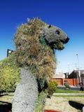 Lion d'herbe Photo stock
