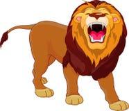 Lion d'hurlement Photos stock