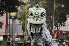 Lion Dance. Traditional Chinese lion dance in Chinese new year Stock Photos