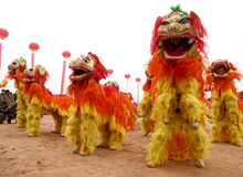 Lion dance. To celebrate the Chinese New Year, the lion dance team two states in street performance ShiZiWu, filmed in February 2012 in baoji city in shaanxi Royalty Free Stock Image