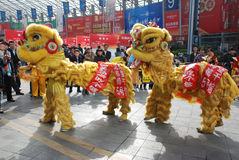Lion dance. In the national sugar and alcoholic commodities trade fair 2012,March 23th-26th,in chengdu,sichuan,china Stock Images