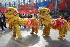 Lion dance Stock Images
