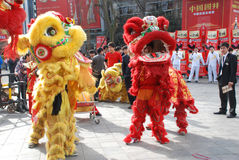 Lion dance. In the national sugar and alcoholic commodities trade fair 2012,March 23th-26th,in chengdu,sichuan,china Stock Image