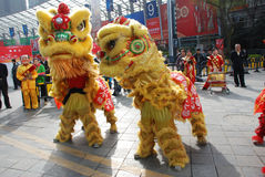 Lion dance. In the national sugar and alcoholic commodities trade fair 2012,March 23th-26th,in chengdu,sichuan,china Royalty Free Stock Image