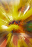 Lion dance. In camera zoom burst motion blur effect of lion dance Royalty Free Stock Photos