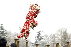 Lion dance Royalty Free Stock Photo