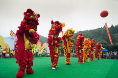 Lion Dance Royaltyfri Bild