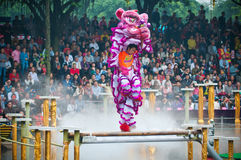 Lion Dance Imagem de Stock Royalty Free