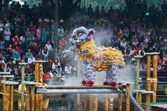 Lion Dance Royaltyfria Bilder