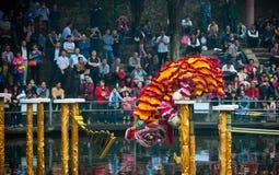 Lion Dance Royalty-vrije Stock Afbeeldingen