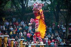 Lion Dance Fotografie Stock