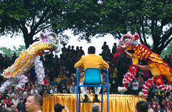 Lion Dance Arkivfoton