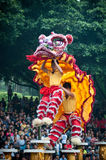 Lion Dance Arkivfoto