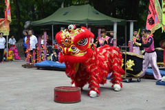 Lion Dance Stock Afbeeldingen