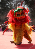 Lion Dance Fotografía de archivo libre de regalías