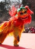 Lion Dance Imagen de archivo libre de regalías