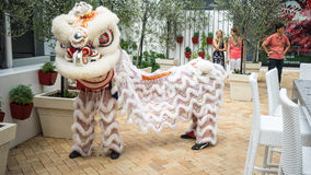 Lion Dance Royalty-vrije Stock Foto's