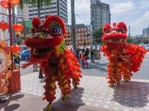 Lion Dance photos stock