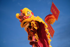 Lion Dance Lizenzfreie Stockfotos