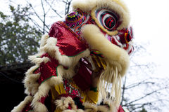 Lion dance. China traditional culture Chinese elements figure Virtual background happy amusement Royalty Free Stock Photography