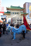 Lion dance in Chinatown, Boston during Chinese New Year celebration Stock Images