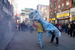 Lion dance in Chinatown, Boston during Chinese New Year celebration Stock Photography