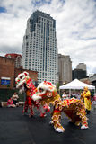 Lion dance in Chinatown, Boston during Chinese New Year celebration Royalty Free Stock Image