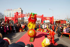 Lion dance for  chinese new ye Royalty Free Stock Images